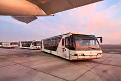 Buses in the airport of Dubai Stock Photos