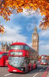 Buses with autumn leaves against Big Ben in London, England, UK Royalty Free Stock Photography