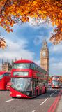 Buses with autumn leaves against Big Ben in London, England, UK Royalty Free Stock Images