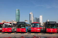 Buses at the Bus Station in Kuwait Royalty Free Stock Photo
