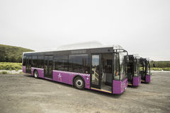 Buses for public transportation in Istanbul, Turkey. Royalty Free Stock Photo