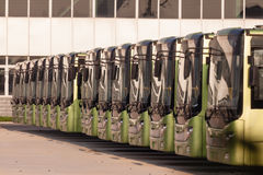 Buses in a row Royalty Free Stock Photo