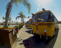 Buses transporting visitors to the Los Angeles County f air in Pomona Royalty Free Stock Photos