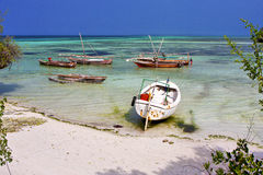 bush africa coastline boat   lagoon relax  of zanzibar Royalty Free Stock Image