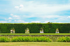 Bush Arch Fence With Blue Sky Royalty Free Stock Images