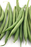 Bush beans Stock Images
