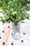 Bush blueberries in the glass. Summer still life Royalty Free Stock Photos