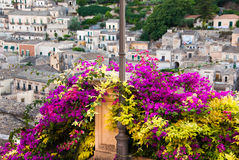 Bush of bouganvillea and the buildings of Modica. A vivid coloured bush of bouganvillea in foreground on the top of a stairway in Modica, Sicily, Italy. On the Royalty Free Stock Photography