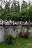 Bush, cementerio y bosque Foto de archivo libre de regalías