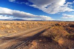 Bush cerca del camino Foto de archivo libre de regalías