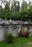 Bush, cimitero e foresta Fotografia Stock Libera da Diritti