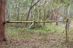 Bush clôturant Australie photo libre de droits