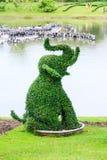 Bush de forme d'éléphant Photographie stock