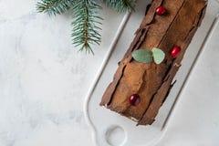 Bush de Noel Christmas Log Cake och för nytt år bakgrund kopiera avstånd royaltyfri bild