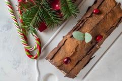 Bush de Noel Christmas Log Cake och för nytt år bakgrund kopiera avstånd arkivbilder