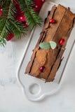 Bush de Noel Christmas Log Cake och för nytt år bakgrund kopiera avstånd royaltyfri fotografi