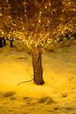 Bush decorated with garland. Bush decorated with yellow garland in snowy park at night Royalty Free Stock Photography