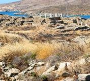 Bush   in delos greece the historycal acropolis and old ruin sit Stock Photos