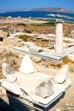 Bush   in delos greece the historycal acropolis and old ruin sit. In delos       greece the historycal acropolis and         old ruin site Stock Image