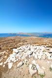 Bush   in delos greece  historycal acropolis and old ruin site. In delos       greece the historycal acropolis and         old ruin site Royalty Free Stock Photography