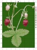 Bush der Erdbeere Kreuzstichentwurf Vektor Abbildung