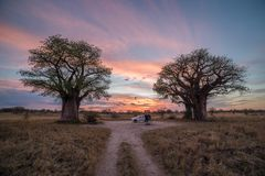 Bush die in Botswana kamperen royalty-vrije stock afbeelding