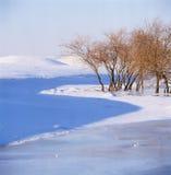 Bush en el río congelado Imagen de archivo