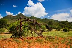 Bush en savannelandschap. Het Westen van Tsavo, Kenia, Afrika Stock Fotografie
