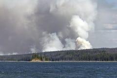 Bush-Feuer Lizenzfreie Stockbilder