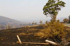 Bush-Feuer Tasmanien 2013 Lizenzfreie Stockfotos