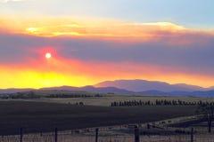 Bush-Feuer Tasmanien Lizenzfreie Stockbilder