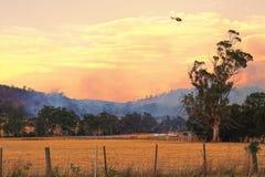 Bush-Feuer Tasmanien Stockbilder