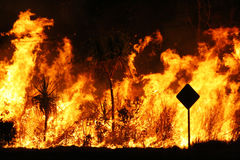 Bush fire Royalty Free Stock Photography