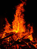 Bush fire Royalty Free Stock Photo
