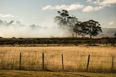 Bush fire in a country town. Royalty Free Stock Photo