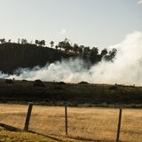 Bush fire in a country town. Stock Photos
