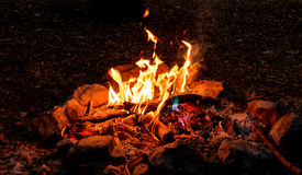 Bush fire place Royalty Free Stock Images