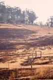 Bush fire Tasmania stock images