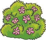 Bush with flowers. Cartoon Illustration of green bush with pink flowers royalty free illustration