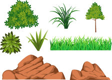 Bush, grass, and rock Stock Photo