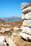 Bush   in greece the historycal   site. In delos       greece the historycal acropolis and         old ruin site Stock Image