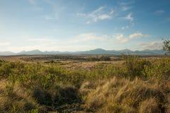 Bush grosso e montanhas distantes em África do Sul Foto de Stock Royalty Free