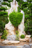 Bush in heart shape in the rock Stock Photography