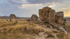 Bush i skała pustynny zmierzch w Isalo, Madagascar Zdjęcie Royalty Free