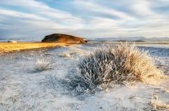 Bush ist bedeckter Schnee und Eis mit Sonnenunterganghimmel Lizenzfreie Stockfotos