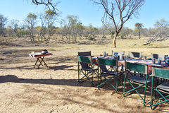 Bush-kampeerterrein Royalty-vrije Stock Afbeelding