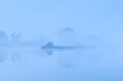 Bush by lake in dense fog Royalty Free Stock Photos