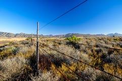 Bush-land dichtbij Route 62 - Oudtshoorn, Zuid-Afrika Stock Fotografie