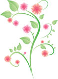 Bush with leaves and pink flowers. Vector bush with leaves and pink flowers on white background Stock Photos