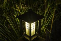 Bush-licht op de tuinen Stock Fotografie